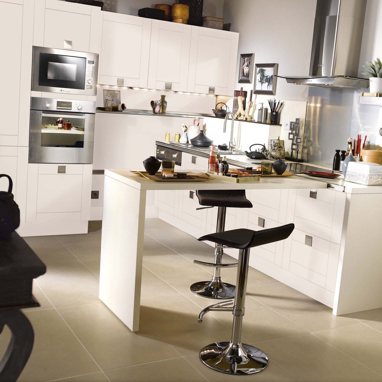 cuisines delinia cuisine cuisine delinia leroy merlin avec rose couleur cuisine delinia leroy. Black Bedroom Furniture Sets. Home Design Ideas