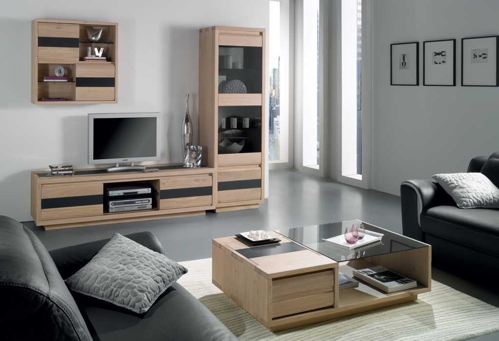 Meuble salon tele maison et mobilier d 39 int rieur - Meuble de salon ikea ...