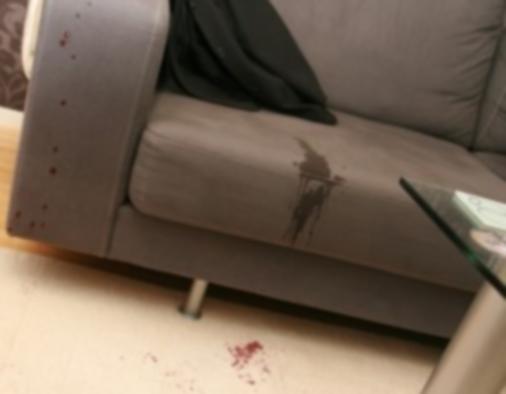 Nettoyant canapé