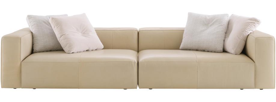 Canape ligne roset