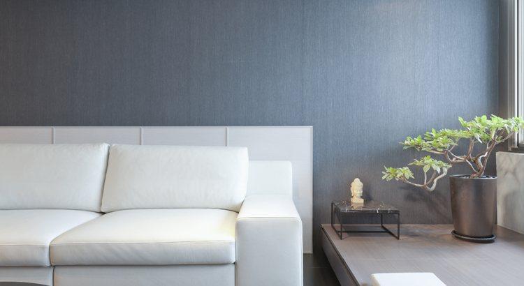 Nettoyer un canapé en cuir avec du lait de toilette