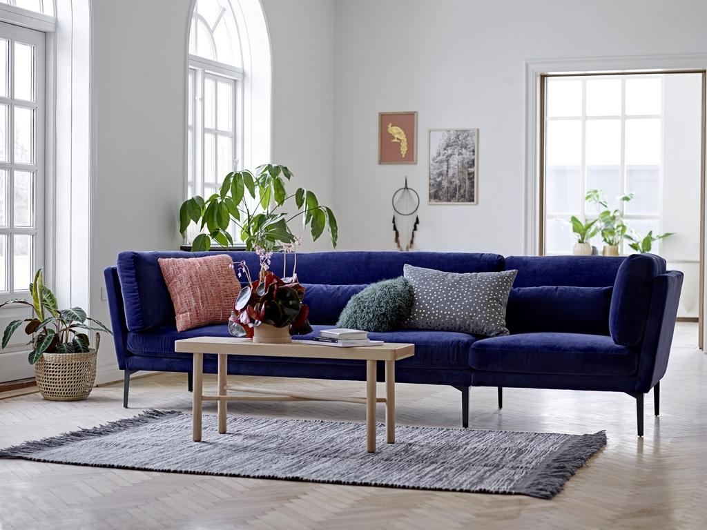Canapé bleu roi