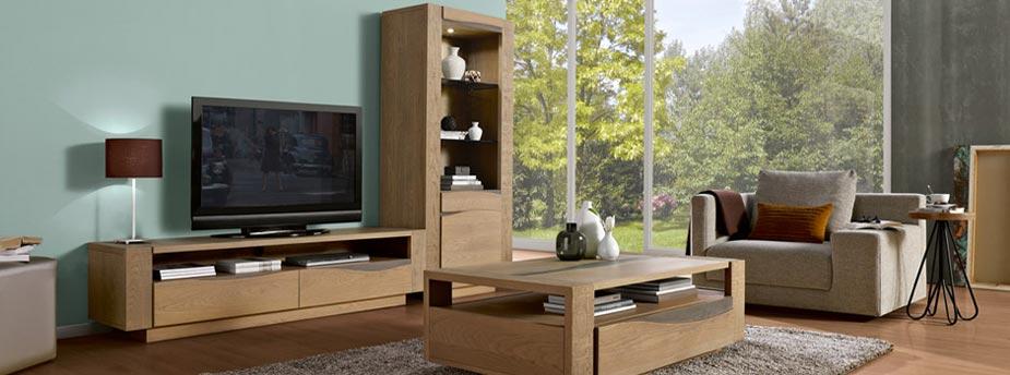 Meuble salon bois design