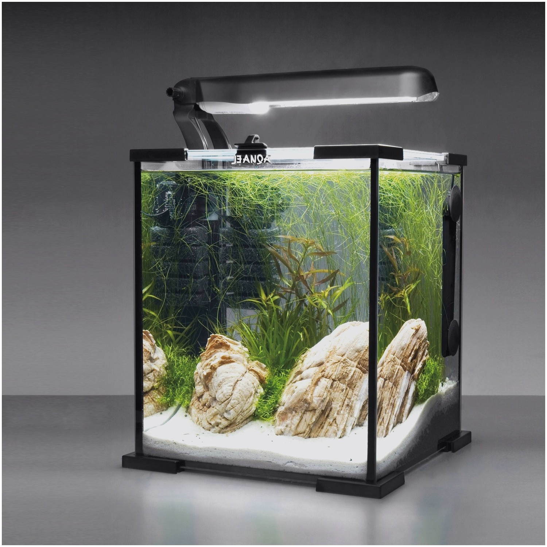 Aquarium dans meuble tv